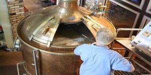 Processo de purificação da cerveja